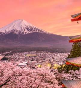 Travel Goals 2020: Why We Fell In Love With Japan