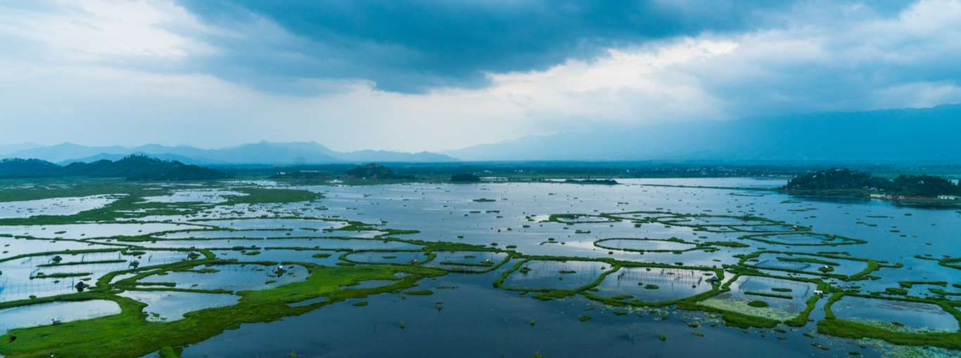 World Environment Day: 8 Biodiverse Spots in India to Visit