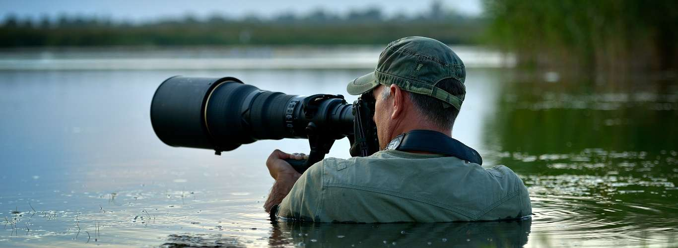 How To Nail the Perfect Shot while Shooting Wildlife Part I