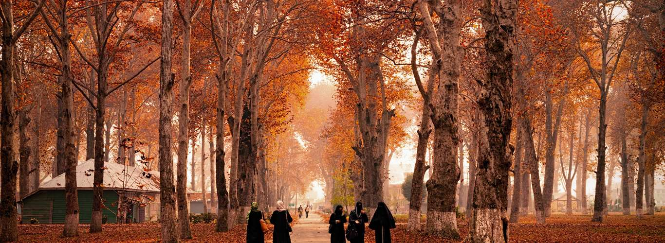 6 Destinations To Visit To Experience Spectacular Autumn