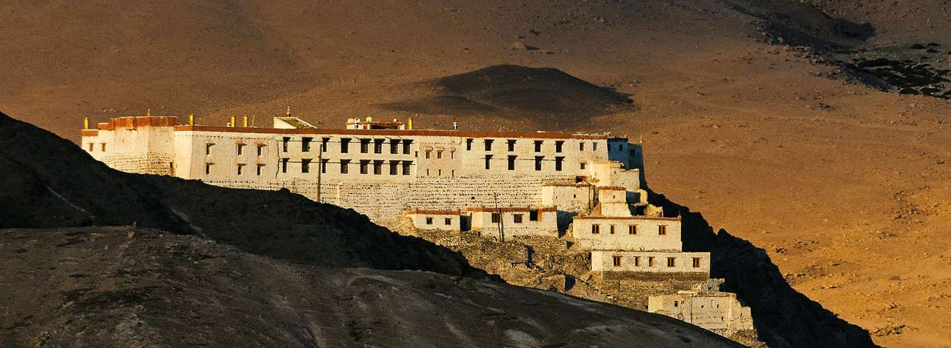 Capturing The Tails Of The Wild In Ladakh