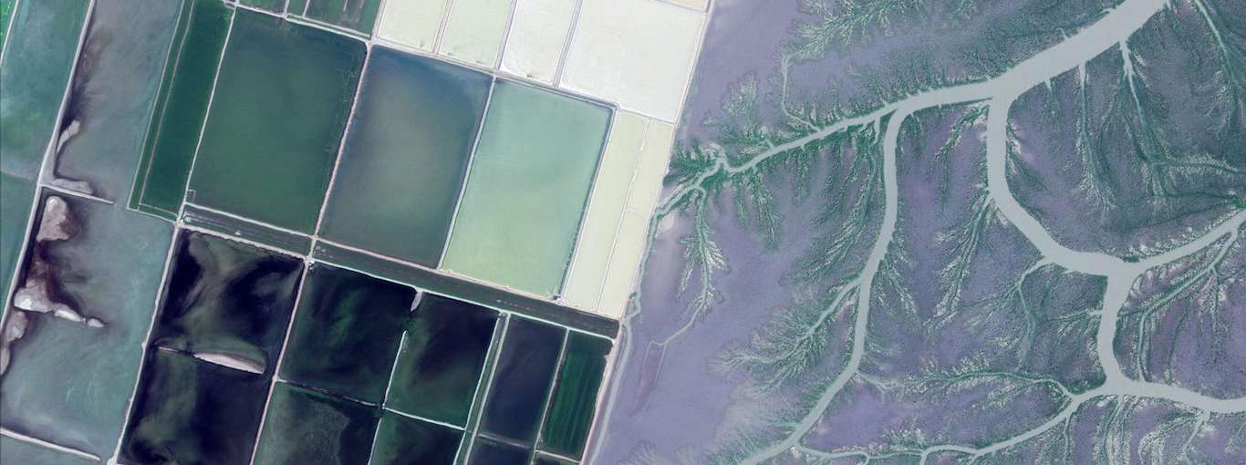 Google Just Released 1,000 Stunning Photos of Earth from Space