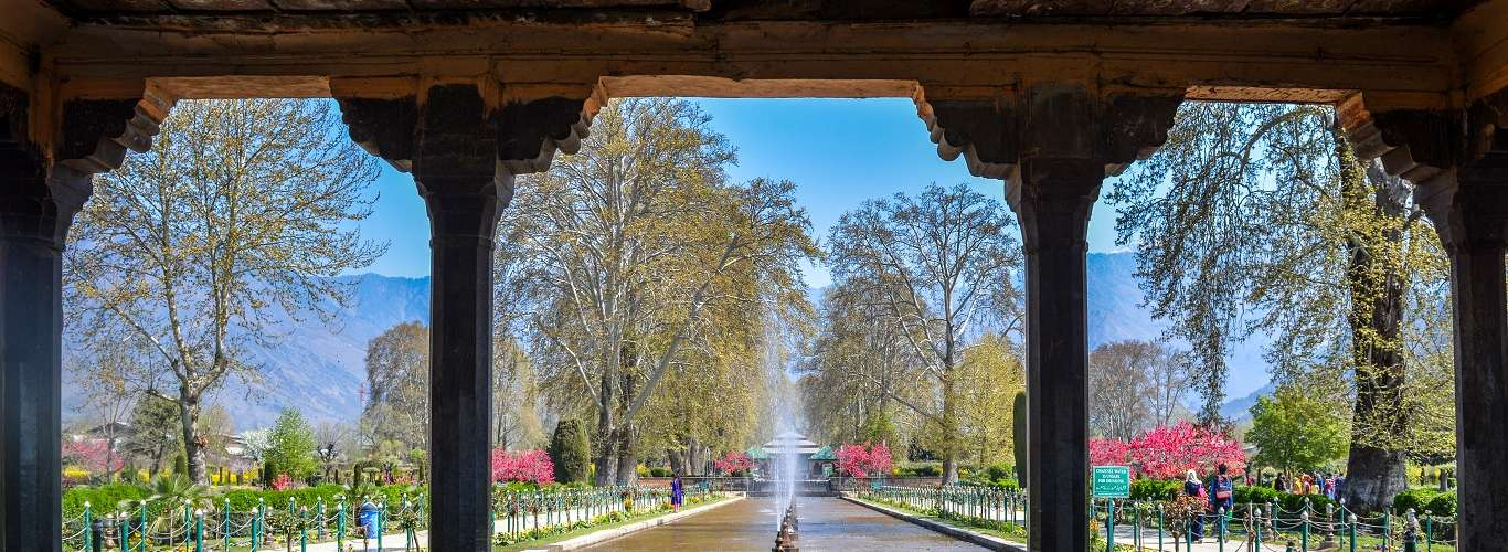 Kashmir's Stunning Parks and Gardens are Open Again