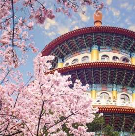Here's What a Trip to Taiwan will look Like Post-COVID