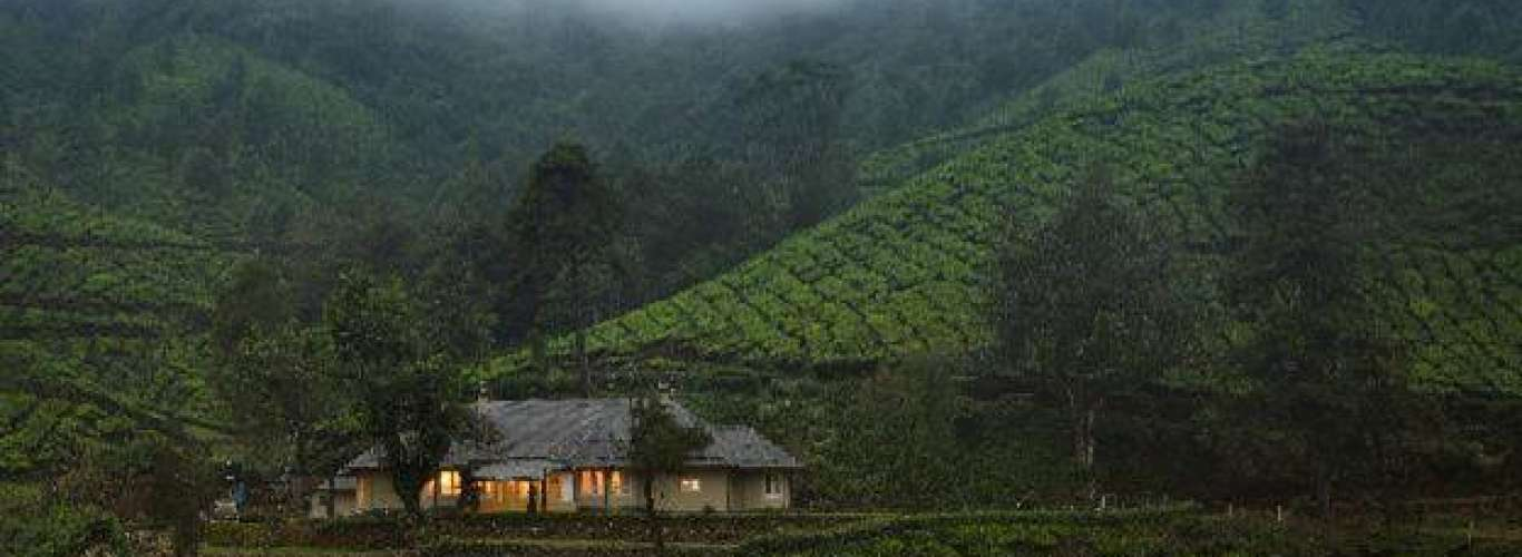 7 New Tea Estate Bungalows Come Up in Kerala