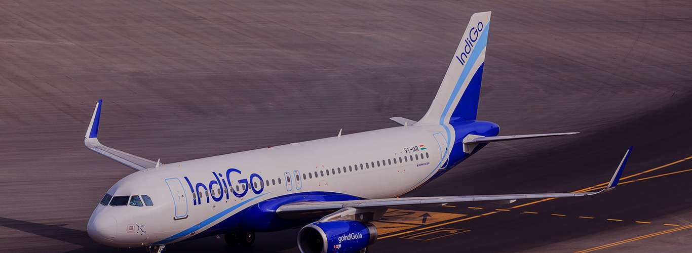 Indigo Goes Big!