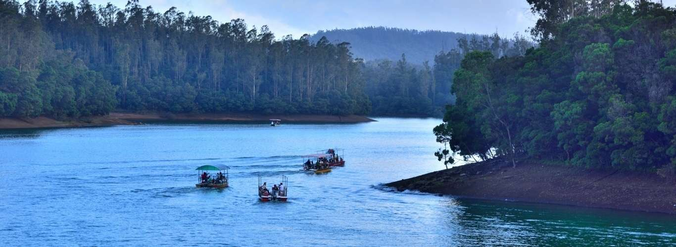 The Nilgiris is Shut for Tourists Right Now