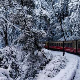 IMD Issues Orange Warning For Upcoming Weather In Shimla