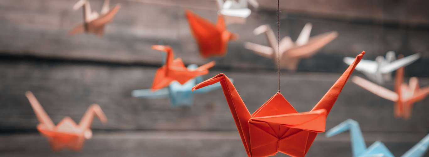 Belgian Cathedral's Origami Installation will Help COVID Patients