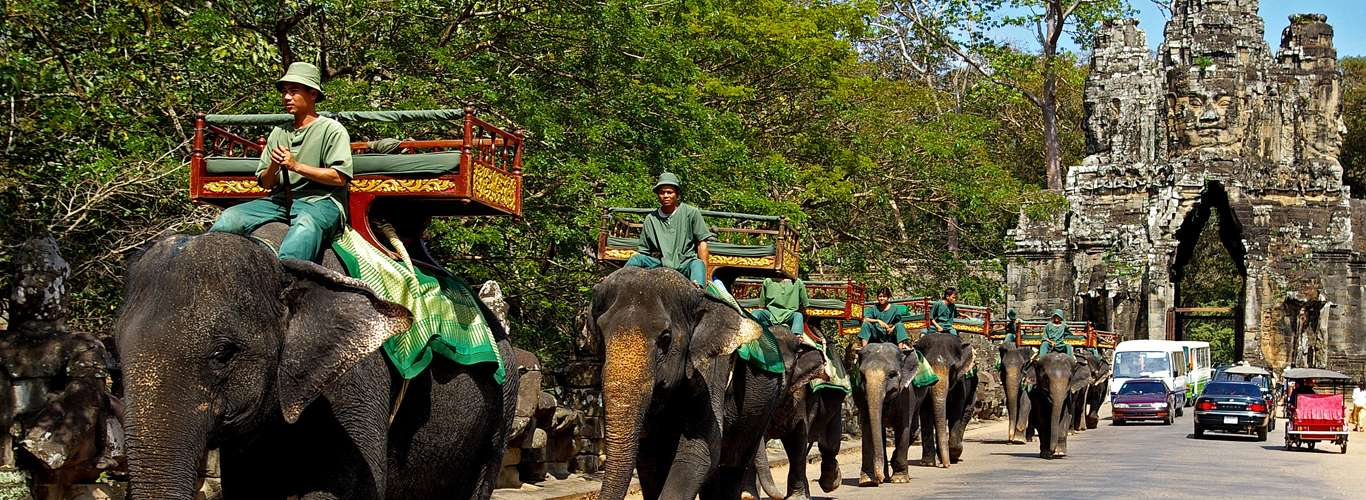 Headway! Elephant Rides to Come to a Halt at Cambodia's Principal Attraction – Angkor Wat