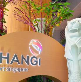 Changi Airport launches a new travel companion for passengers