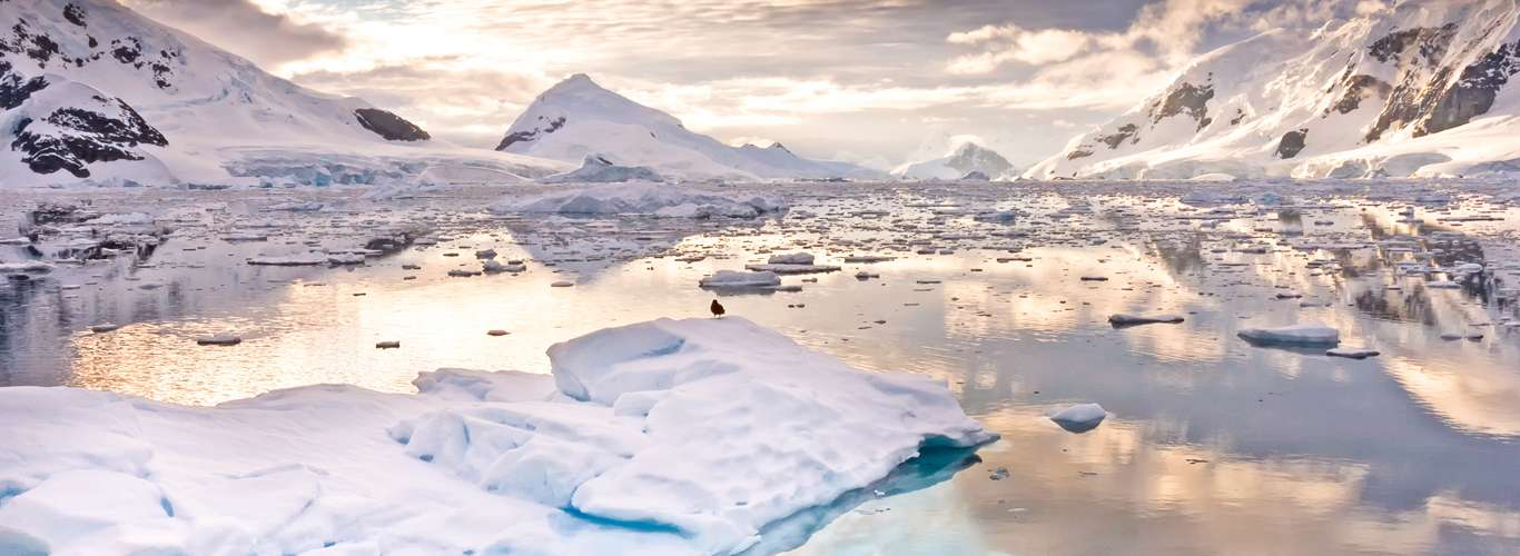 Warmest Temperature In Antarctica Recorded At 65 Degrees