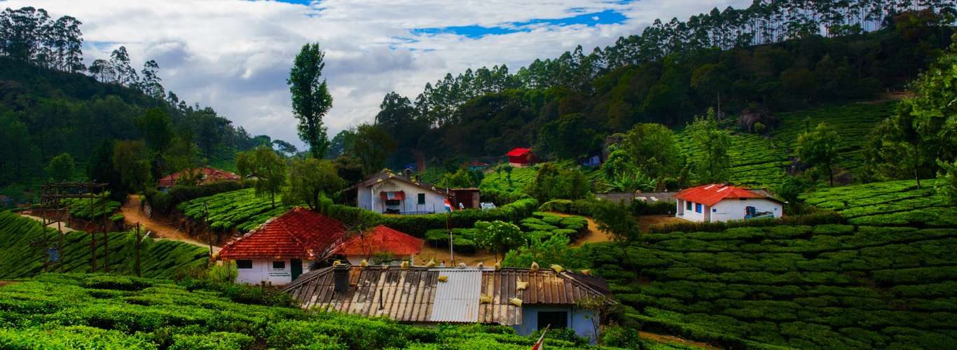 Going to Munnar? Consider Downloading this App