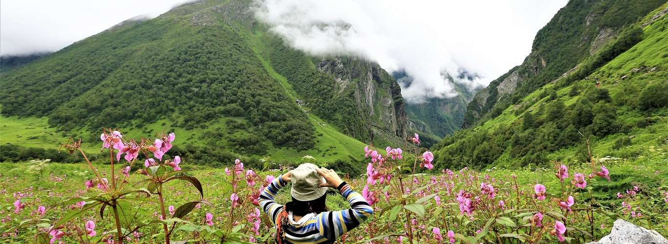 You can Plan that Trek to the Valley of Flowers
