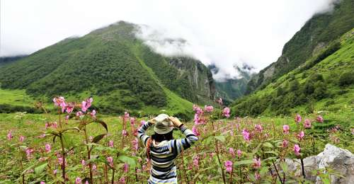 Valley of Flowers is Now Open for Travellers