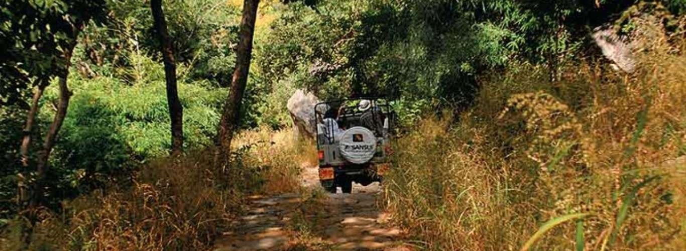 Hiking in the hills of southern Rajasthan
