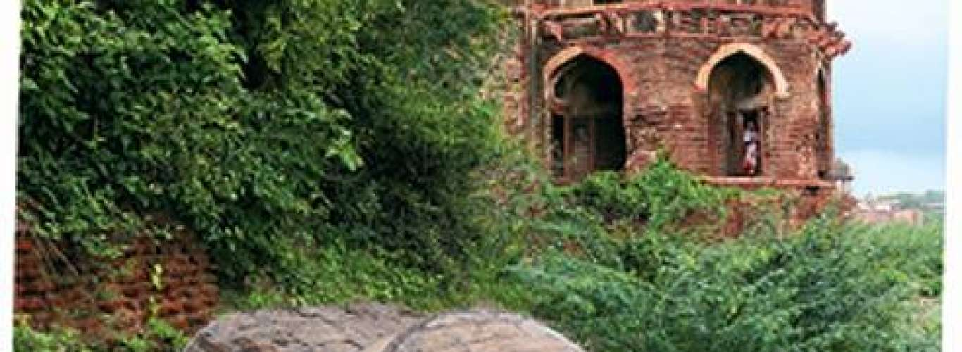 The architectural heritage of Agra
