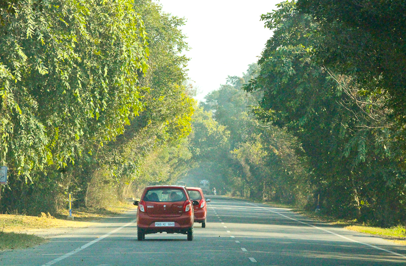 Road Tripping In Punjab with a Maruti Suzuki Alto