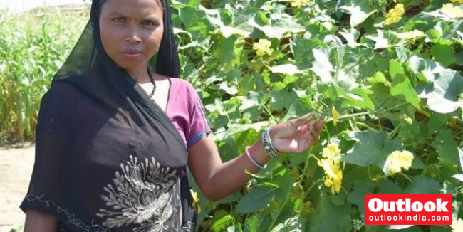 A German Initiative Helping Boost Nutrition And Health In Madhya Pradesh