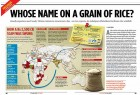 <b>The ghost that haunts:</b> The rice scam that Outlook broke in its July 27 issue