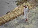 The shepherd at Sabarmati Ashram