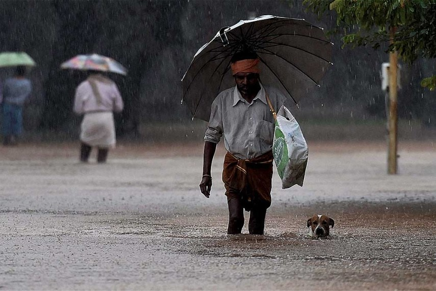 Image result for rain in india