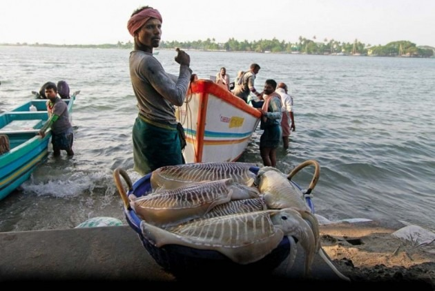 Sri Lankan Navy Arrests 10 Indian Fishermen