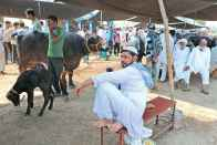 Meat Business Employs 5 Crore, They Will All Lose Jobs, Says Head Of Quraish Muslims On Cattle Sale Ban