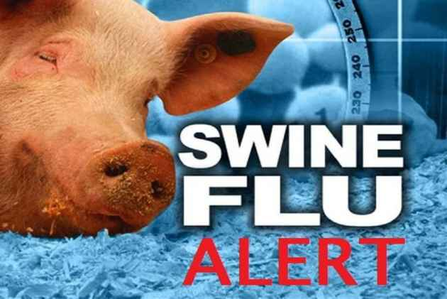 Gujarat: Swine flu death toll at 323