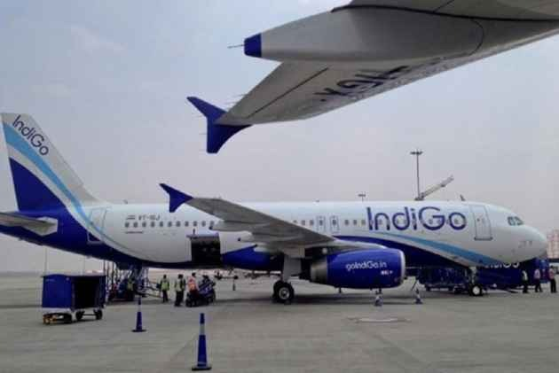 IndiGo, GoAir Cancel 50 Flights As Their Neo Aircraft Fleet Remains Grounded For Third  Day