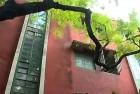 Amitav Ghosh's Role in Calcutta's Horror House Mystery