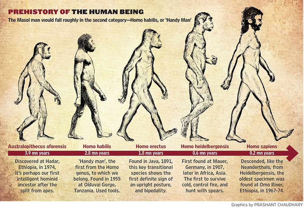 Early Humans Evolution Here Lies The First Hu...
