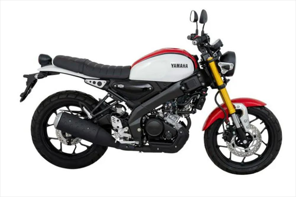 Yamaha Xsr155 Your Questions Answered
