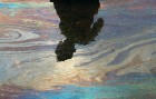 <b>Not a Monet</b> A boy in Mumbai is reflected on water mixed with oil from the spill