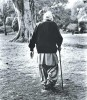 <b>Fond memories, no malice</b> Khushwant on a stroll