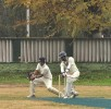 <b>Square cuts</b> Cricket in the shadow of the chinars