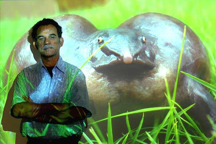 The Frog Purana