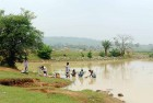 <b>Drowned voice</b> The Paderkola pond which UPA says is its effort