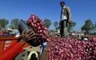 Produce at the Pimpalgaon wholesale onion market in Nasik