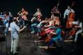 Stradivarius Takes The Harbour Line
