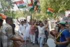 Cong Wins 19 Out of 37 Seats in Local Bodies Bypolls in Rajasthan