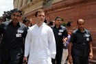 Rahul Gandhi Should Stop Lying and Apologise: RSS