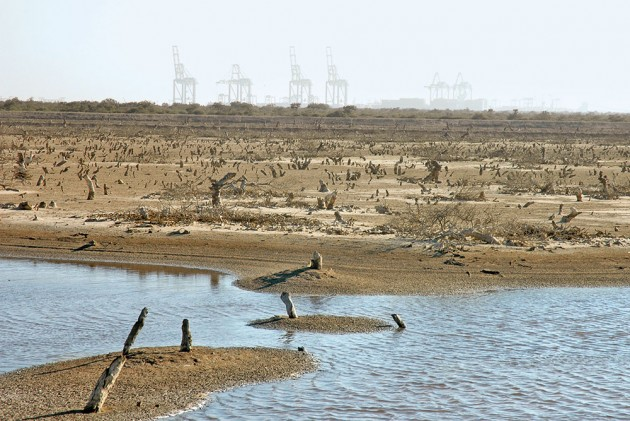 Mundra: The Port Of No Call