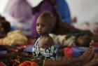 195 Million in India Undernourished