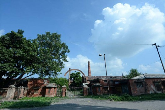 Uttar Pradesh, UP State Sugar Corporation