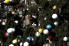Pope Blasts Vatican's Resistance to Reform in His Christmas Speech