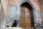 Uttering 'Talaq Talaq Talaq' Does Not Amount to Divorce, Says Salma Ansari, Wife of Vice President Hamid Ansari