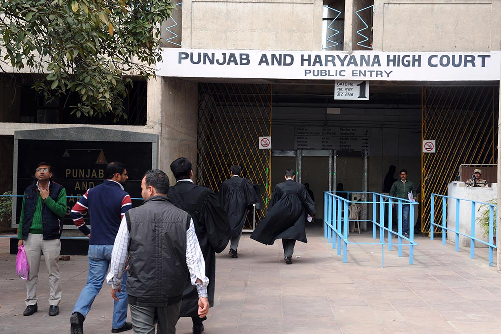 punjab and haryana high court case status by fir