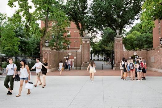 Harvard Ahoy!