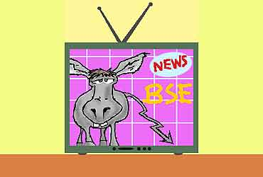 TV And The Nonsensex